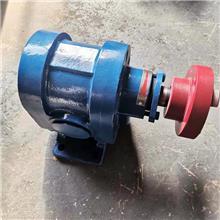 船用燃油泵 2CY燃油齿轮泵 燃油喷射泵 锅炉点火油泵 金海泵业现货供应
