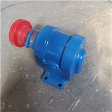 高压燃油泵 2CY齿轮油泵 燃油喷射泵 沥青站点火油泵 泊头厂家现货供应