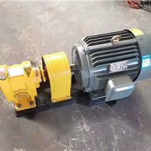 现货 船用燃油泵 2cy4.2增压齿轮泵 燃油喷射泵 合金钢耐磨泵 金海泵业