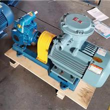 燃油喷射泵  2cy系列燃油泵 船用燃油泵 增压油泵 金海泵业现货供应