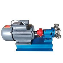 销售 RXB50不锈钢自吸泵 输送颗粒不锈钢泵 自吸挠性泵 优良选材
