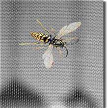 卧室用窗纱网 家用纱网 隔断用窗纱网 猪场防蚊网
