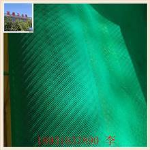塑料网 塑料导流网 风电叶片用导流网 塑料过滤网 防虫网