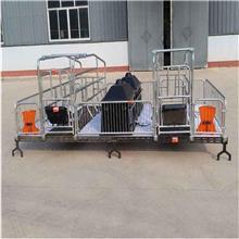 景泰铸铁母猪保育床 加宽母猪定位栏 厂家供应