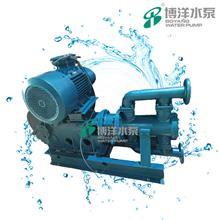 2WBR铸铁电动高温蒸汽往复泵 蒸汽往复泵 往复泵