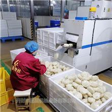 大型方便即食机的生产成品 口感爽滑 机械化生产的碗装粉丝生产线 丽星厂家提供