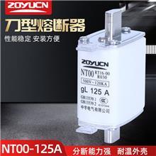 中宇低压熔断器NT00 125A熔芯熔断器芯子陶瓷保险丝RT16-00熔芯
