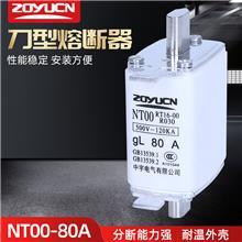 中宇低压熔断器NT00 80A熔芯熔断器芯子陶瓷保险丝RT16-00熔芯