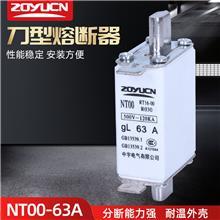 中宇低压熔断器NT00 63A熔芯熔断器芯子陶瓷保险丝RT16-00熔芯