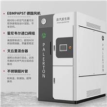 电蒸汽发生器 生物质蒸汽发生器 节能环保蒸汽锅炉 锅炉设备