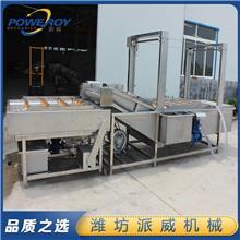 果蔬气泡清洗机设备 食品气泡喷淋清洗机 5米多功能气泡喷淋清洗机  派威机械
