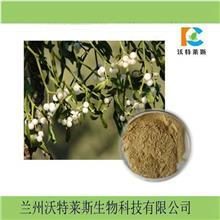 黑茶提取物 比例 可定制 喷雾干燥粉 沃特莱斯现货供应