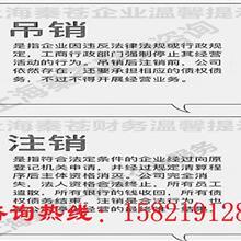 上海浦江美容养生、摄影拍照、园林花卉办理执照怎么收费