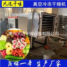 可定制急冻真空干燥机小型食品冷冻真空干燥机海鲜扇贝肉低温设备