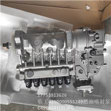 临工装载机配件批发 力沃 4110000555249原厂燃油喷射泵C4994681厂家直销
