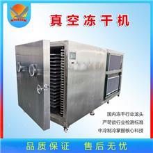 释迦果真空冻干机 苹果蔬菜低温冷冻干燥机 草莓水果真空冻干设备