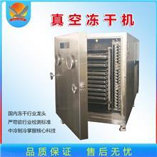 黄瓜果蔬真空冻干机 桑葚低温冷冻干燥机 榴莲真空冻干设备