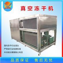 展鸿科技胡萝卜果蔬真空冻干机 无花果低温冷冻干燥机 玫瑰花真空冻干设备