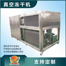菠萝蜜真空冻干机 樱桃低温冷冻干燥机 青豆真空冻干设备