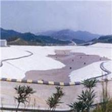 【防水毯】垃圾填埋场用GCL钠基膨润土防水毯 覆膜防渗漏防水毯