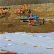 钠基膨润土防水毯 人工湖水系覆膜型防水毯 垃圾填埋场防渗水毯