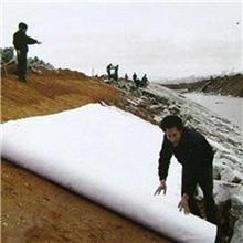 高强加筋土工布 公路养护土工布 白色防水无纺土工布 长丝针刺土工布