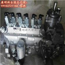 晋中市康明斯发动机配件 4063844燃油泵 燃油泵配件