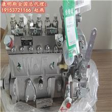 东风康明斯国三国四发动机C3971477燃油泵 燃油泵配件