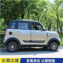 骏驰款成人电动车 电动汽车 空调轿车 油电两用家用代步车
