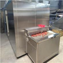 速冻机 黄桃隧道式速冻机设备 柠檬片速冻设备厂家 速冻机生产厂家