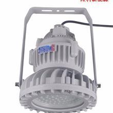 加油站充电站照明灯 防爆防水防尘50w100w吊灯 隆科新能源