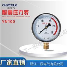 厂家直销YN100充油耐震压力表 防腐蚀耐高温真空 压力仪表精准测压 化工水利工业用压力表