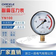 厂家供应YN100充油耐震压力表 防腐蚀耐高温真空压力仪表精准测压