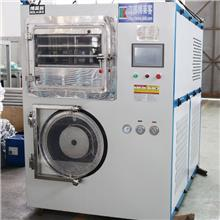 实验室用真空冷冻干燥机 方形真空冻干机 低温方形食品干燥机