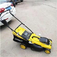 充电式电动割草机 手推式锂电剪草机 汽油草坪机 四轮草坪修剪机