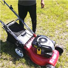 高尔夫场草坪割草机 别墅绿地剪草机 四冲汽油自走式园林草坪修剪机