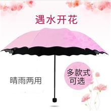 荷叶边伞遇水开花晴雨伞黑胶伞三折遮阳伞广告太阳伞