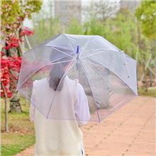 透明伞 PVC广告伞 自动晴雨遮阳雨伞 长柄定制雨伞 印刷logo