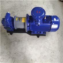 塑料磁力驱动泵 多种型号 磁力驱动旋涡泵 立式磁力驱动泵