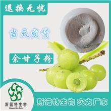 余柑子提取物 水溶性余甘子 粉药食同源余甘子果粉