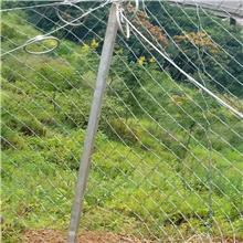 边坡防护网价格 主动边坡防护网 边坡安全防护网 启菲特