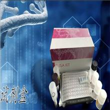 人肌腱蛋白R(TN-R)ELISA检测试剂盒
