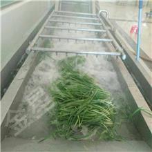 大型豆芽机 全自动多功能气泡清洗机 果蔬清洗机械设备