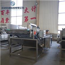 304不锈钢洗菜机 商用菠菜叶类蔬菜清洗机 商用消毒臭氧洗菜机 迈进机械