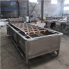 超声波鼓泡式清洗机 臭氧杀菌水果气泡清洗机 商用消毒臭氧洗菜机 迈进机械