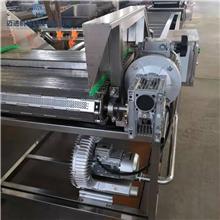 鲜豆角气泡清洗机 商用菠菜叶类蔬菜清洗机 商用消毒臭氧洗菜机 迈进机械