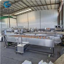 果蔬清洗流水线 全自动连续式洗菜设备 莲藕去皮机 上佳机械