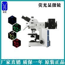 生产厂家销售_荧光显微镜_金相显微镜_谨诺_批量供应