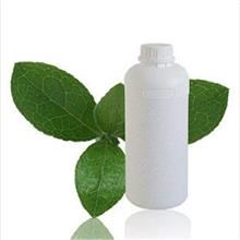甲基丙烯酸二甲氨基乙酯生产厂家