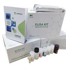 植物海藻糖-6-磷酸合成酶(TPS)ELISA试剂盒
